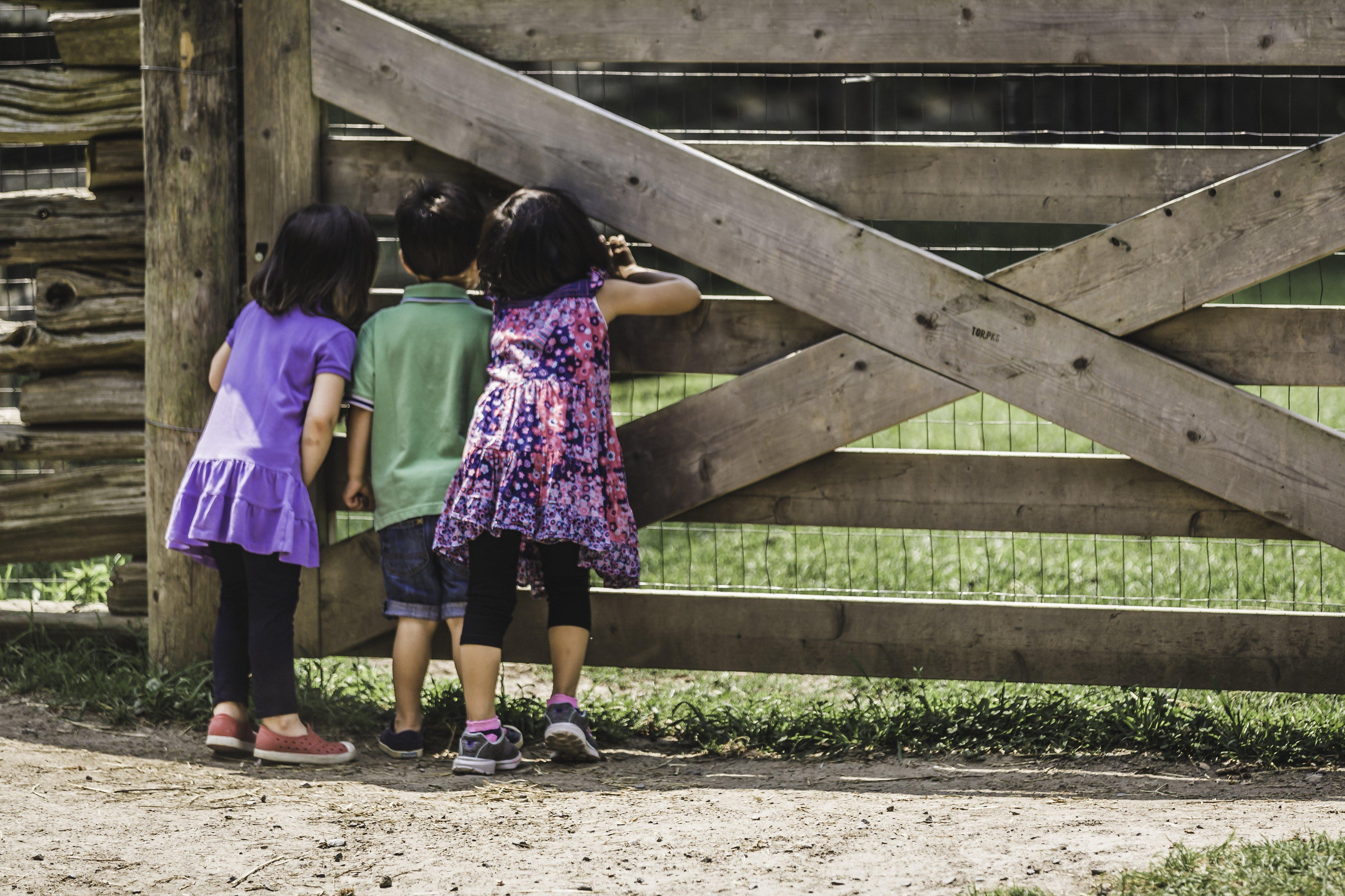 La nature, terrain de jeu privilégié du jeu libre sans instruction
